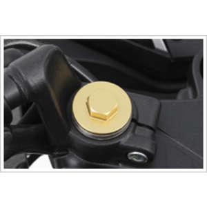 HONDA [Closeout Item] Fork Bolt: Gold Type [Special Price Item]