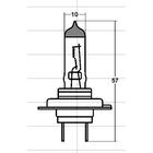 RAYBRIG Light Bulb for Head Lamp