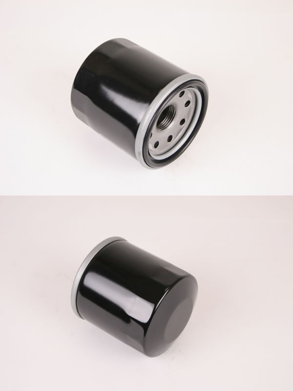 GOODS Oil Filter (1 Set of 10pcs.)