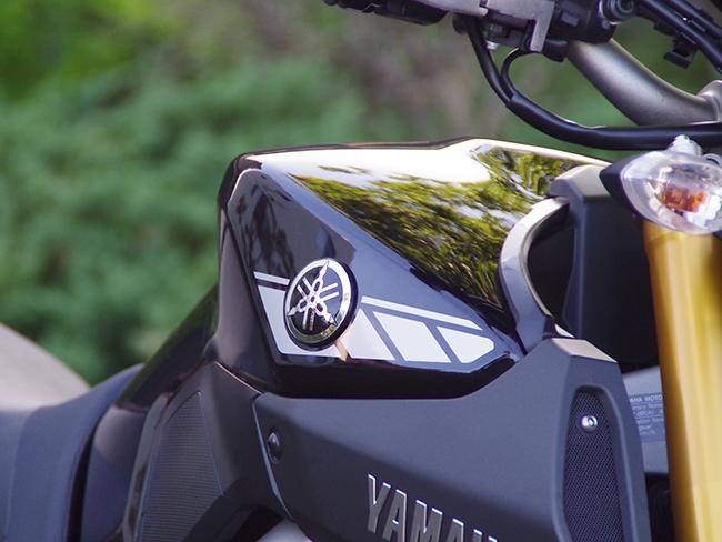 World Walk Standard Strobe Sticker Single Color For Mt
