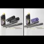 HYPERPRO Suspension Combination Kit (Front & Rear Spring)
