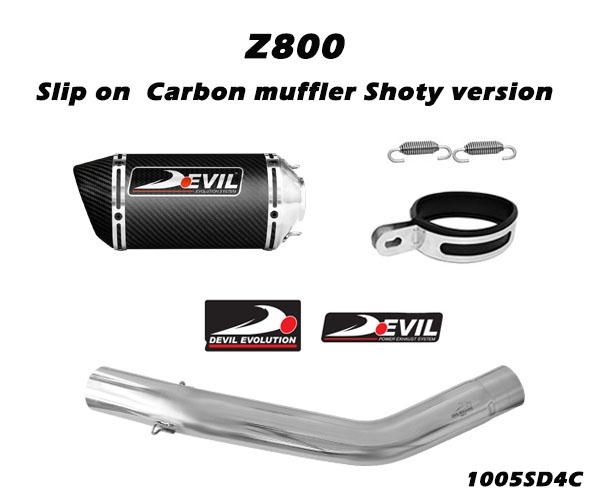 全段排氣管 w/ 碳纖維消音器 D2.1C