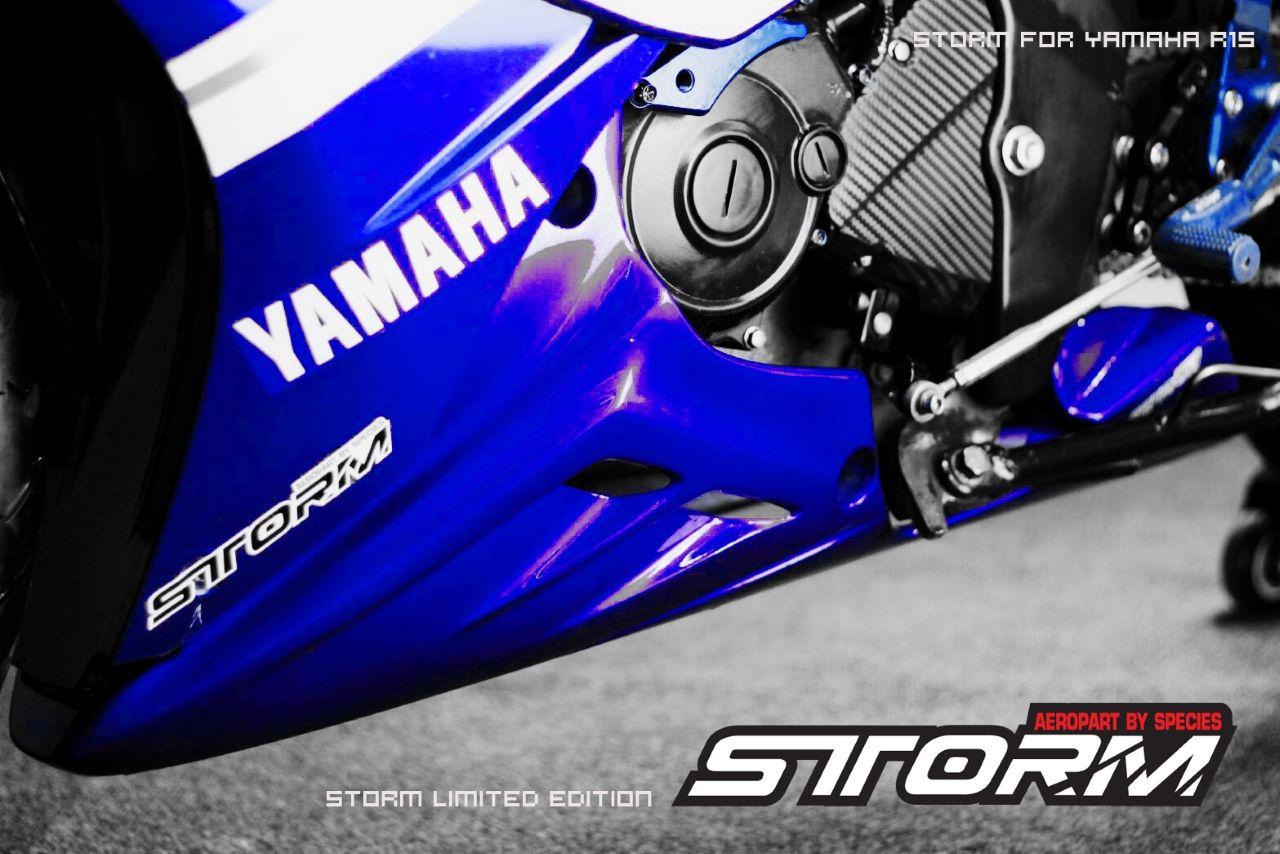Yamaha R15 Accessories Price List India