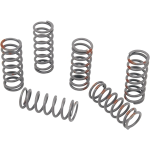 KG POWERSPORTS CLUTCH SPRING SET [KGS-030]