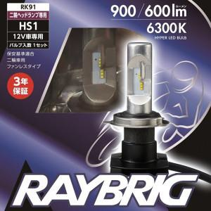 raybrig led h4