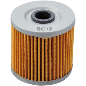 DAYTONA Replaceoil Filter Inbyggd In Type (KAWASAKI-serien)