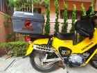 ALPHATHREE Pillion Carrier